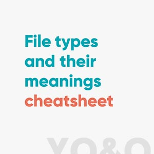 Download our File Types and Meanings Checklist